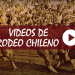 Videos de Rodeo Chileno